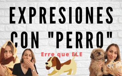 """Expresiones con """"perro"""""""