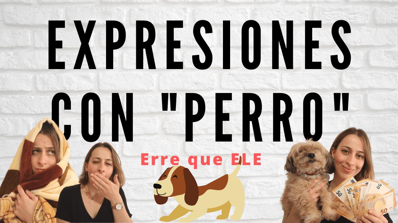 Expresiones con perro